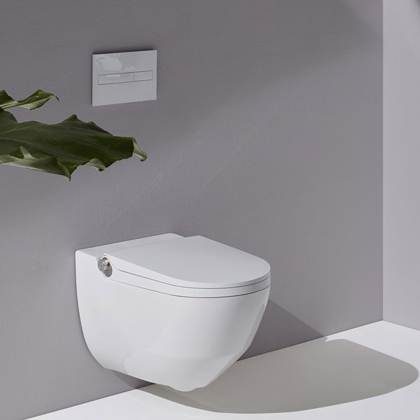 LAUFEN Cleanet Riva toilet